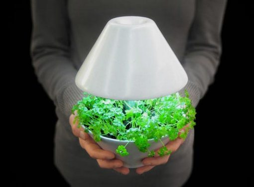 lightpot-led-garden-lamp2