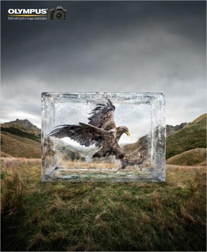 olympus_ice_eagle_1-412x502